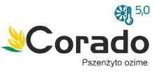 coradowyr4.jpg